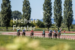 2020_07_05_Avenches_MForsterPhotography_0202 - Michèle Forster Photography