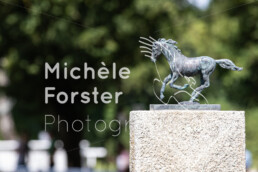 2020_08_15_Dielsdorf_MForsterPhotography_0028 - Michèle Forster Photography