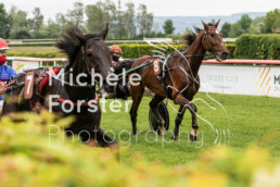 2021_05_24_Dielsdorf_MForsterPhotography_0022 - Michèle Forster Photography