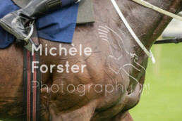 2021_09_12_Aarau_MForsterPhotography_0129 - Michèle Forster Photography